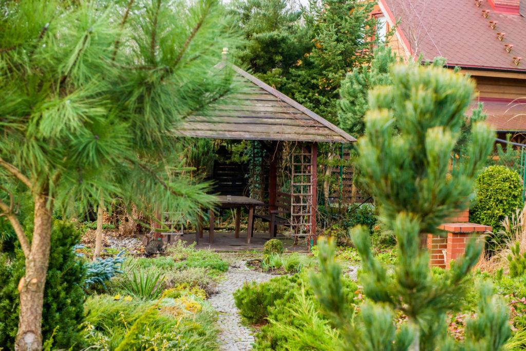 altanka w naszym ogródku