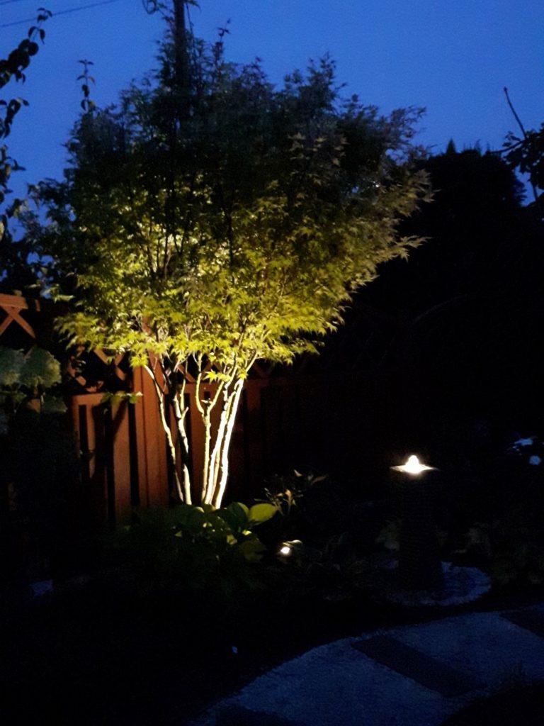 układ ogrodu przy domu wolnostojącym