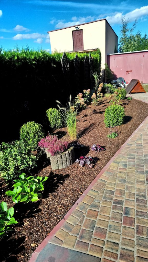 układ roślin w nowym ogrodzie